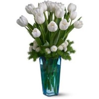 bunga tulip impor